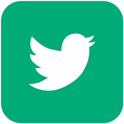 Twitter mint social media icon